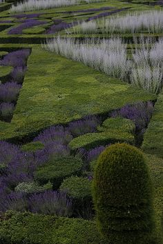Villandry Castle Garden, France / repinned on toby designs