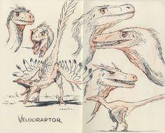 Jake Parker, Velociraptor
