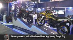 Informe Motos Italika