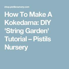 How To Make A Kokedama: DIY 'String Garden' Tutorial – Pistils Nursery