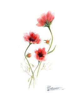 Original Minimalist painting Watercolor flower art Red Blossom cosmos botanical wall room decor gift Wildflower Floral artwork - Informations About Original Minimalist painting Watercolor flower art Red Blossom cosmos botanical - Watercolor Flowers, Watercolor Paintings, Original Paintings, Flower Prints, Flower Art, Cosmos Flowers, Minimalist Painting, Floral Artwork, Flower Wall Decor