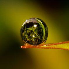 Photograph crystal ball by teguh santosa on 500px