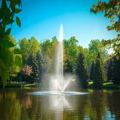 If a Pond Fountain is something you've been considering we urge you to read this informative Buyers Guide before purchasing as there are important things to take into consideration. Pond Aerator, Decorative Fountains, Farm Pond, Outdoor Ponds, Outdoor Water Features, Pond Fountains, Architectural House Plans, Landscape Architecture, Solar