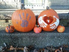 Wonderful Thanksgiving Pregnancy Announcement Ideas that Your Dear Ones Will Love – Baby Announcement Thanksgiving Baby Announcement, Thanksgiving Pregnancy Announcement, Pregnancy Announcement Photos, Pumpkin Baby Announcement, October Pregnancy Announcement, Halloween Baby Announcement, Erwarten Baby, Baby Love, Baby Gender