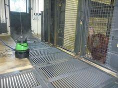 遠心式加湿器が東京の某動物園でゴリラ畜舎内の乾燥防止用としてゴリラ君から喜ばれています。 Centrifugal humidifier is used at gorilla livestock barn on one of zoo located in Tokyo,Japan. Gorilla feels happy in getting a moisture during even sleeping time.