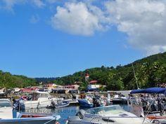 Deshaies, GUADELOUPE ( Caribbean - F.W.I)