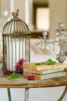 a small cage with greenery sitting upon an old book would look cute adjacent to the cage with books IN it