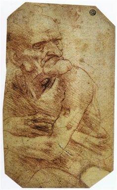 Study of an Old Man - Leonardo da Vinci