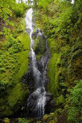 Casey Creek Loop Hike - Hiking in Portland, Oregon and Washington