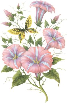 Flores diversas...