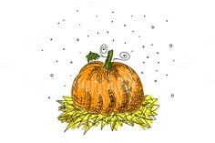 Pumkin for thanksgiving by MarioMovement on @creativemarket
