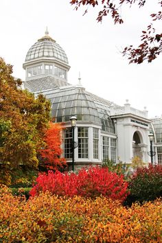 Franklin Park Conservatory in Columbus is beautiful this time of year!  (The John F. Wolfe Palm House)