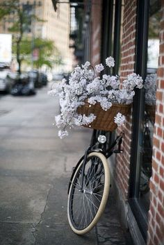 The Bike Basket Girl®: fotografia Beautiful Flowers, Beautiful Places, White Flowers, Beautiful Moments, Vintage Bicycles, Belle Photo, Pretty Pictures, Scenery, Bloom