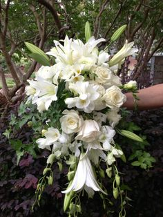 I'm not a fan of white because it's cliche but this is gorgeous. Cascading Bouquet Gallery of Flowers