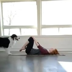 Wanna try doga? - Lea Marie Rempel - Wanna try doga? Dog yoga helps pets and their owners relax… 🐾 - Cute Funny Animals, Funny Dogs, Funny Dachshund, Dachshund Puppies, Animals And Pets, Baby Animals, Cute Puppies, Cute Dogs, Awesome Dogs