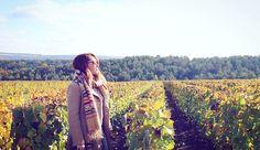 En plein cœur des vignes du @champagnedevaux  un véritable Bonheur naturel   @leblogdekat #champagneDevaux #barsurseine #champagne