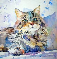 Animals - Carole Hillsbery Watercolor