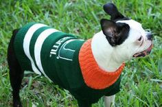 Let your furry football fan cheer on their favorite team in this cozy Miami Hurricanes Pet Sweater. The perfect everyday doggie sweater for the #1 Furry Fan.