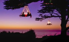 Extreme camping in the trees. California