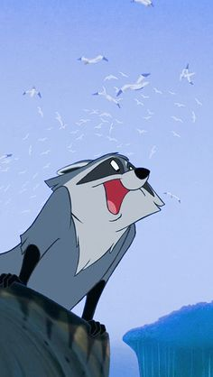 Charday stayed saying somebody look like Meeko she would say you know that raccoon off Pocahontas