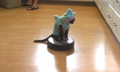 Cat in shark costume rides Roomba as it cleans the kitchen