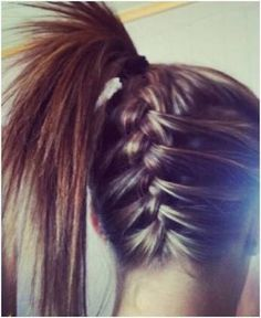 French braid underneath the pony tail.