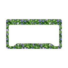 Periwinkle Blooms License Plate Holder on CafePress.com