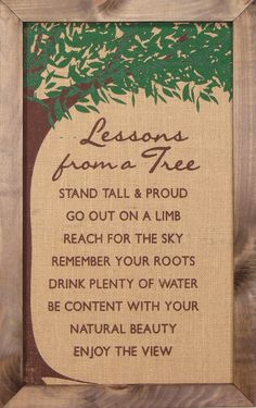 "Lessons From a Tree! (Ex. ""Go Out on a Limb!"") Beautiful wall art from Buddha Groove."
