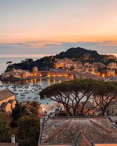 painted of dreams Baia del Silenzio, Sestri levante, Italia by Places Around The World, Around The Worlds, Sestri Levante, Beautiful Places To Travel, Travel Aesthetic, Italy Travel, Italy Vacation, Dream Vacations, Wonders Of The World