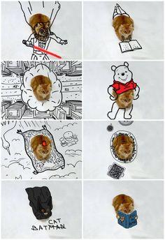 Une utilisatrice du site Bored Panda a eu l'idée d'organisé un concours d'illustrations. Elle a proposé à la communauté du blog imaginer des créations à partir d'une même photographie d'un chat et de composer des mises en scènes humoristiques. Le résultat ne manque pas d'imagination et d'humour. A ce jour plus de 200 illustrations ont été postées via un article dédié.