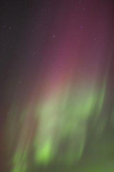 ✯ Northern Lights, Edmonton, Alberta, Canada