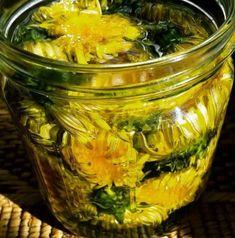 liečivý olej z púpavových kvetov Herbal Medicine, Natural Medicine, Kim Jisoo, Alternative Medicine, Health Remedies, Pickles, Cucumber, Recovery, Herbalism