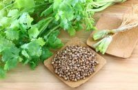 how to get rid of canker sores - Coriander
