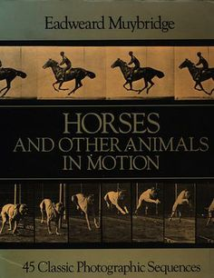 Eadweard Muybridge - Horses and other animals in motion