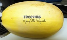 How to freeze spaghetti squash — Frugal Debt Free Life Freezing Squash, Spaghetti Squash Casserole, Freezer Cooking, Just Cooking, Freezer Meals, Freezable Meals, Dairy Free Recipes, Frugal Recipes, Recipes