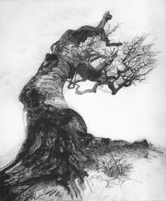 THE SORROWFUL TREE, drypoint - Bruno Cavellec