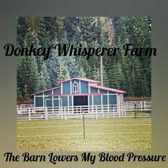 Donkey Whisperer Farm