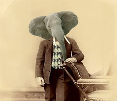 Dr Al E Font  Vintage Elephant 5x7 Print  by AnimalFancy on Etsy, $15.00