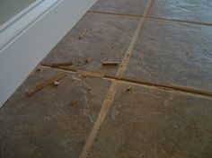This floor grout was repaired once but failed. The joint needs to be clean and dust free before the next repair is done. PHOTO CREDIT:  Tim Carter