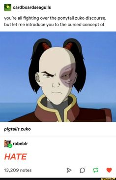 avatar the last airbender Youre all ghting over the ponytail zuko discourse, but let me introduce you to the cursed concept of popular memes on the site Avatar Airbender, Avatar Aang, Suki Avatar, Avatar The Last Airbender Funny, The Last Avatar, Avatar Funny, Team Avatar, Suki And Sokka, Geeks
