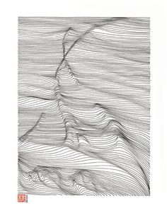 LINESCAPING INK DRAWING by Momoko Sudo, via Behance.  Possible DIY project?