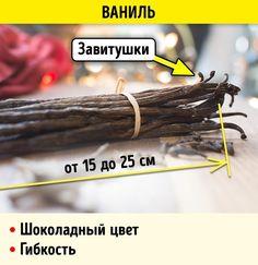 Как отличить натуральные специи и пряности от подделки