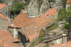 Resultado de imagen para monsanto portugal