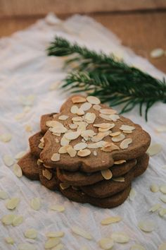 Christmas recipe to make speculoos biscuits