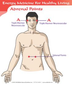 B. Adrenal Points – Using the 3-Finger Notch described above, hold A – Triple Warmer Neurovascular on one side of temple and with the other hand hold   1″ above and 1″ out from navel on both sides with thumb and middle finger for 3-5 minutes. Switch hands and repeat on other side. An alternate version is to hold a 3-Finger notch at the #1 Thyroid Point while simultaneously holding the Adrenal Points above the navel.
