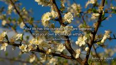 """""""Your life has little purpose if you are separate from your own knowledge within."""" — John de Ruiter Podcast 39"""