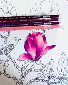 Leidiany Cristina (@leidianycris) • Photos et vidéos Instagram Coloring Book Art, Coloring Tips, Colouring Pages, Adult Coloring Pages, Colored Pencil Tutorial, Colored Pencil Techniques, Blending Colored Pencils, Colouring Techniques, Drawing Techniques