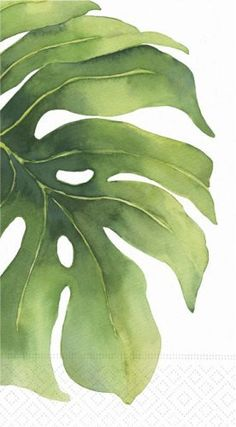 Vegetal watercolor