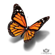 Monarchfalter 3d Schmetterling tattoo von WickedlyLovelyArt auf Etsy
