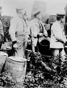 Tour Scotland Photographs: Old Photograph Prisoners Of War Berry Pickers Blairgowrie Perthshire Scotland